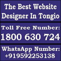 Web Design Tongio, Website Designer Tongio, Website Designer in Tongio, SEO Tongio, SEO in Tongio, SEO Expert Tongio, The Best Website Designer Tongio, Site Design Tongio, Website Builder Tongio, Website Developer Tongio.